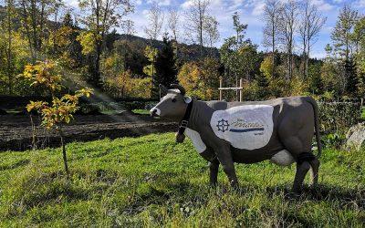Herzlich Willkommen im Mühlen-Blog