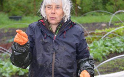 Hilde – große Leidenschaft für Bio-Gemüse