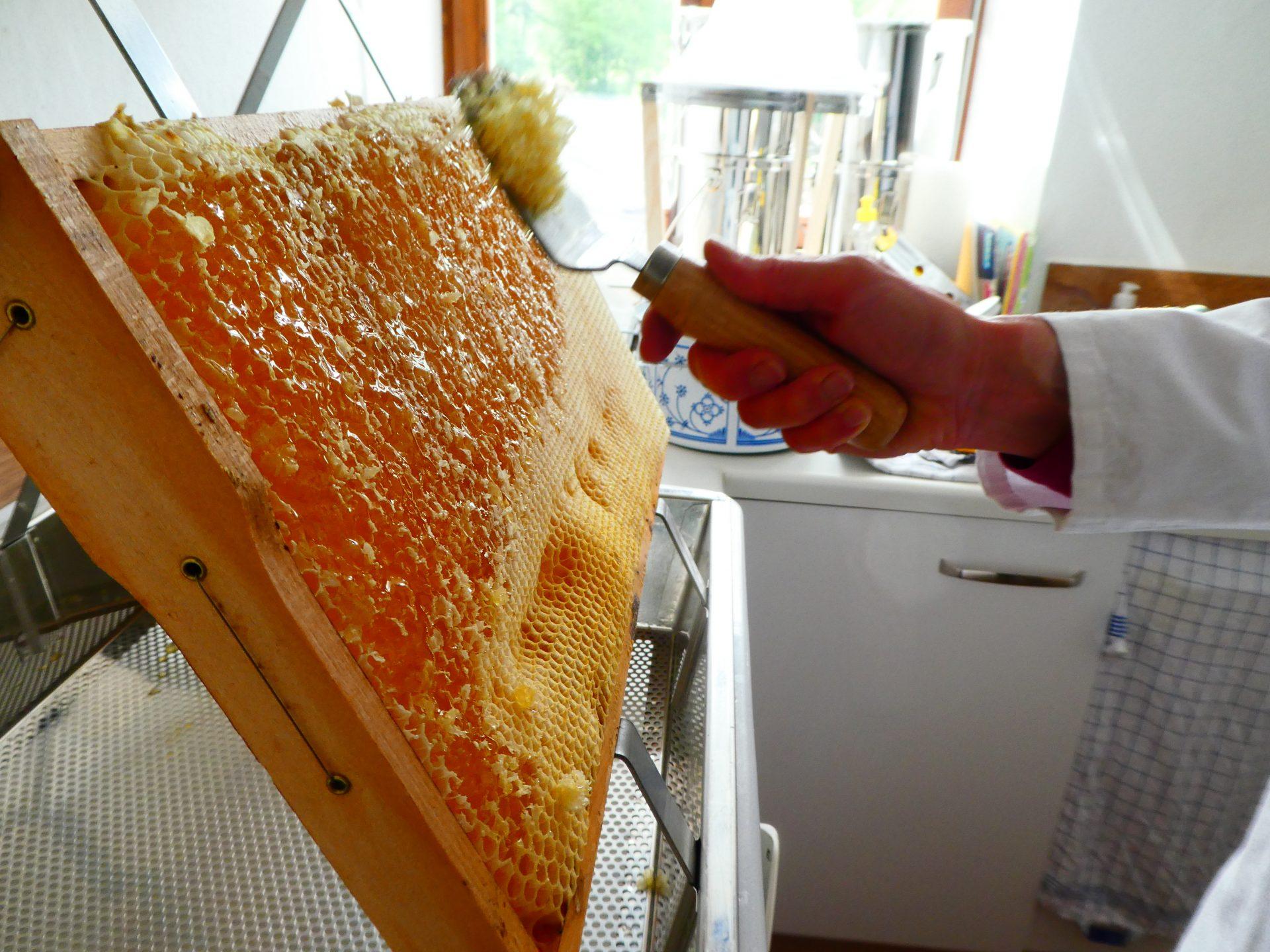 Honig schleudern: Entdeckelung