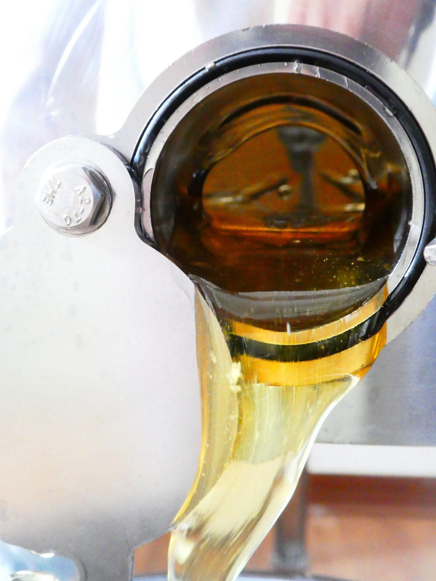 Honig schleudern: das Gold fließt