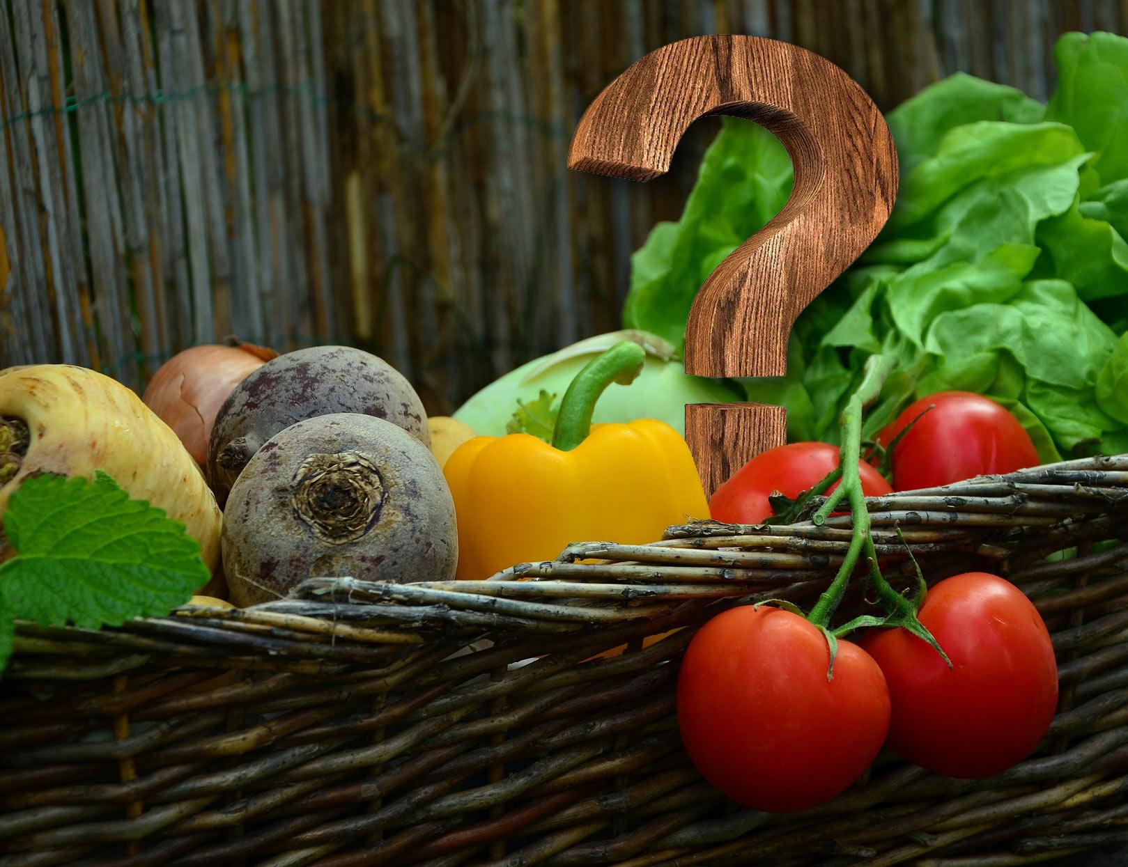 Fragen zur BIO Gemüsekiste