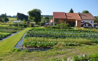 Nachhaltiges Allgäu in der Oberen Mühle Wertach
